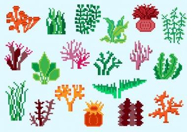 Set of pixel algae
