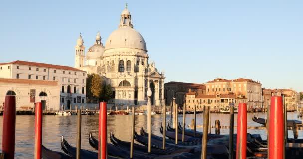 Benátky, bazilika Panny Marie a Grand Canal s gondolami v časném ranním světle