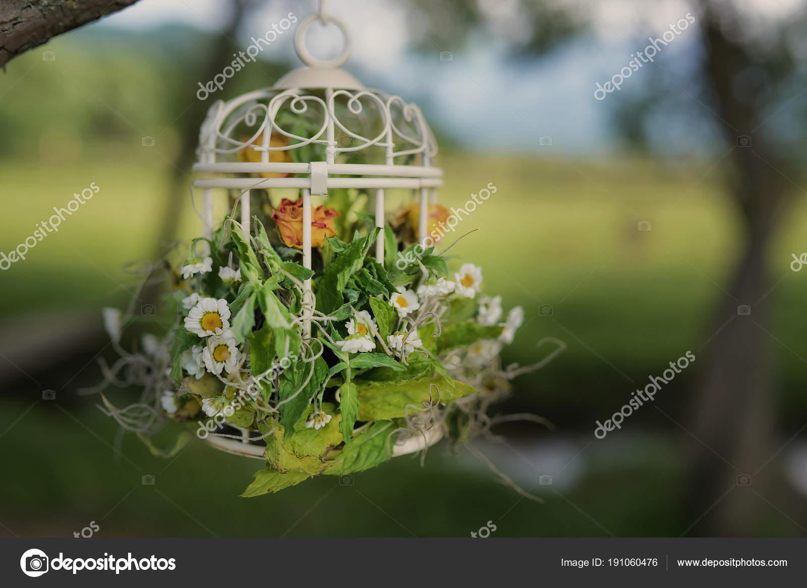 Decoracion de jardines exteriores great decoracion de for Decoracion jardines exteriores