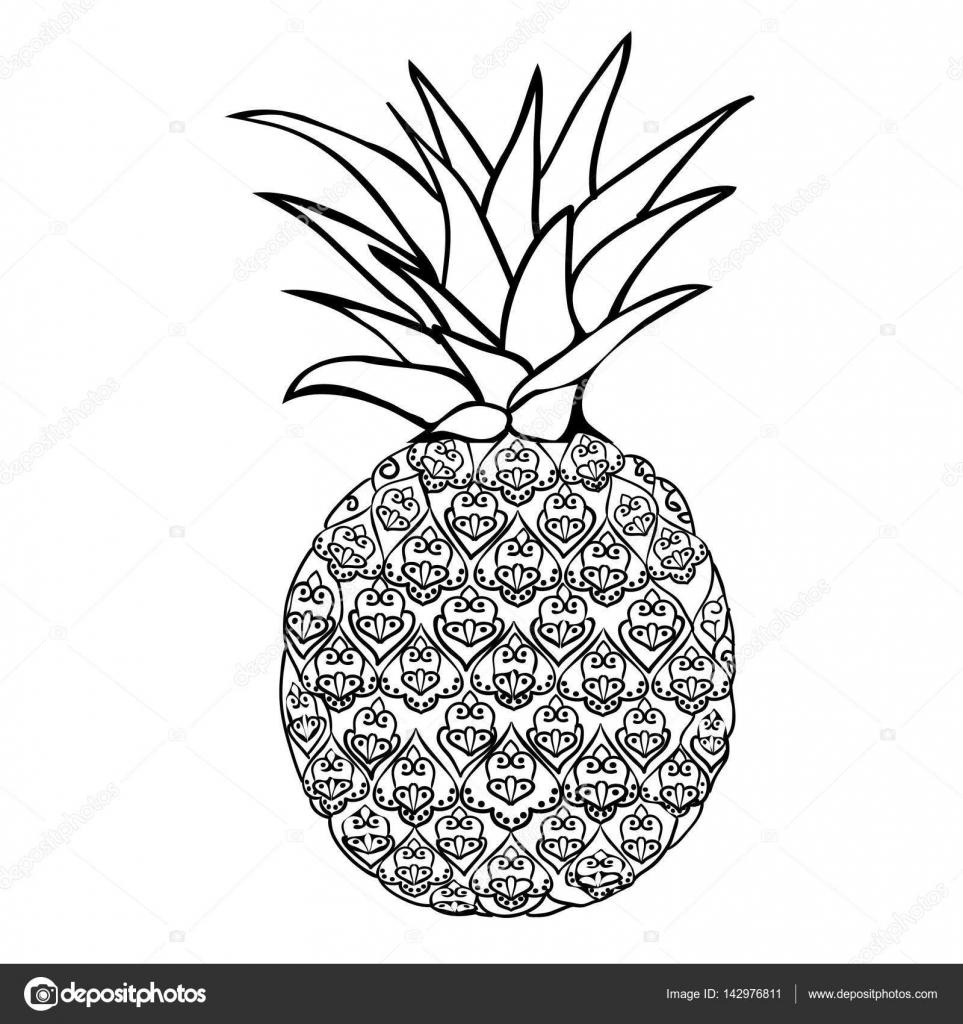 95316c619468 pineapple fruit illustration — Stock Vector © 89534886399 mail.ru ...