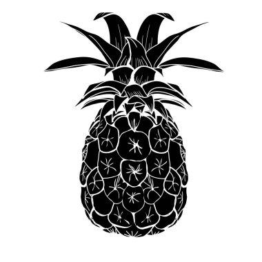 pineapple fruit illustration