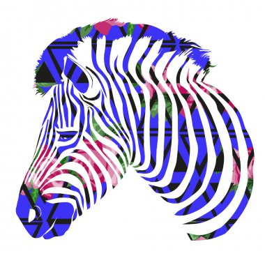 Color abstract zebra