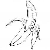 návrh tropických banán