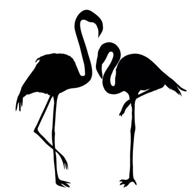 design of two Flamingos