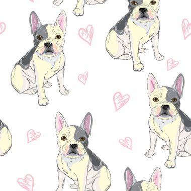 bulldog pattern, puppy, dog, vector, illustration