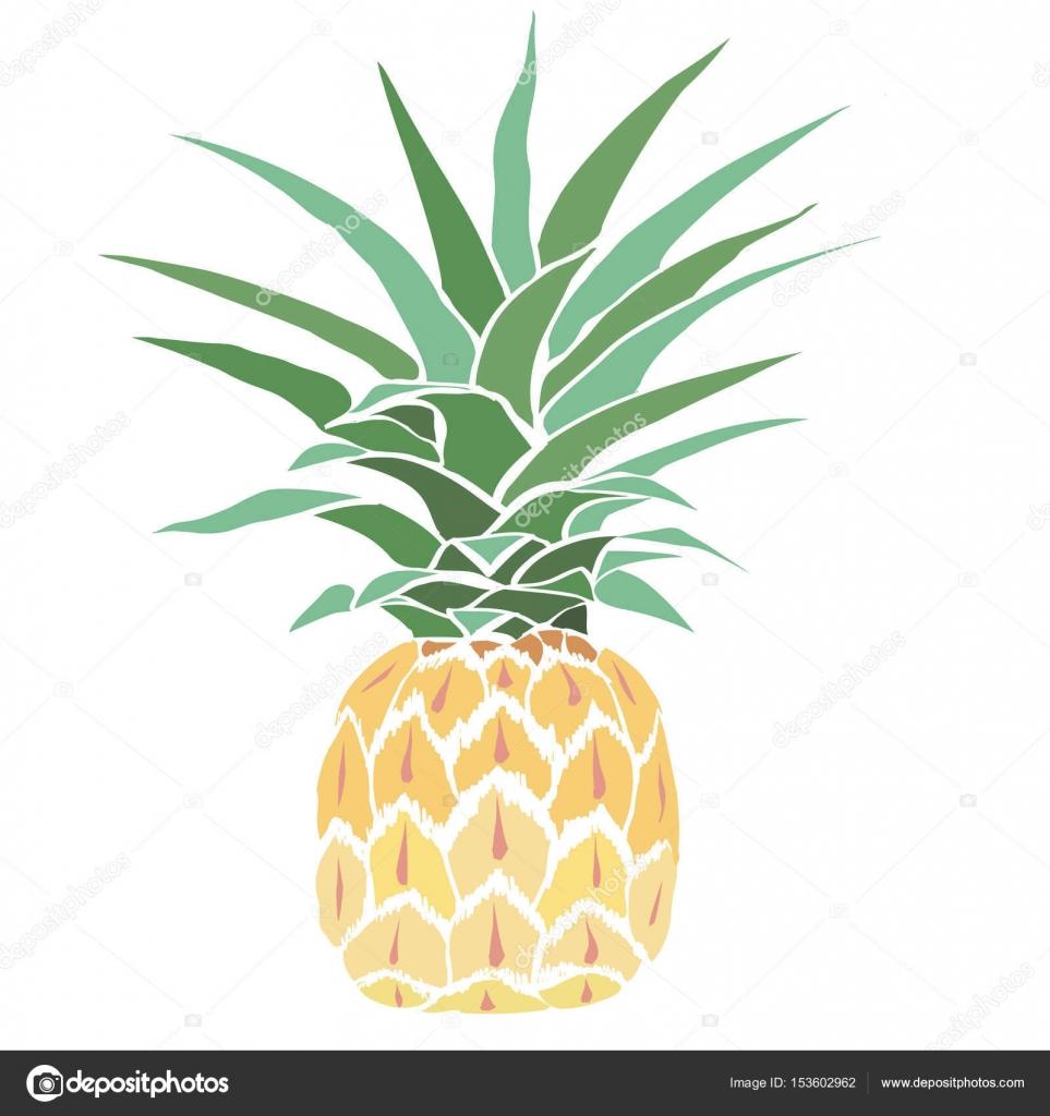 efdc9e9b1036 pineapple fruit