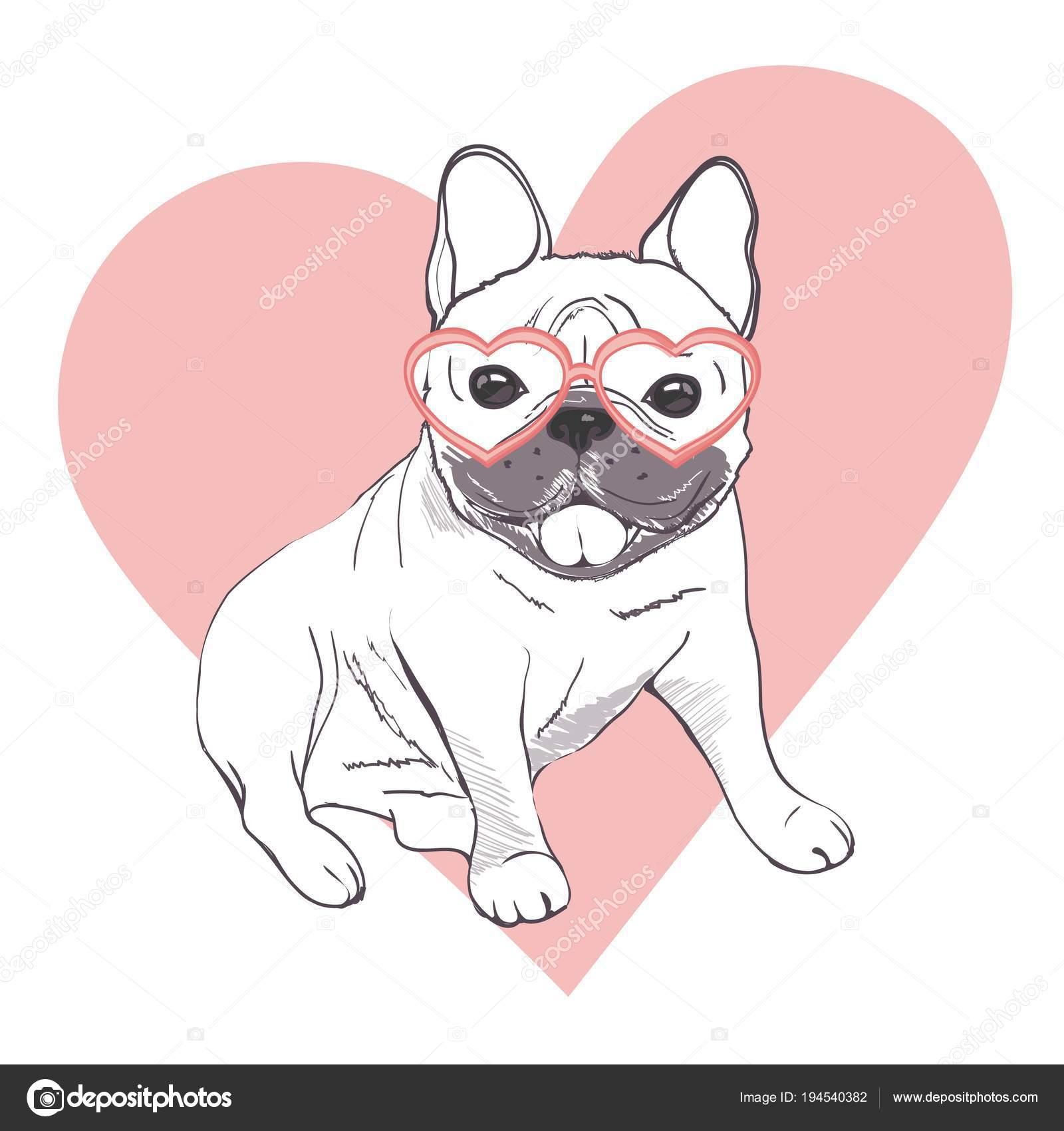 engraçado filhotes de buldogue francês engraçado bulldog francês