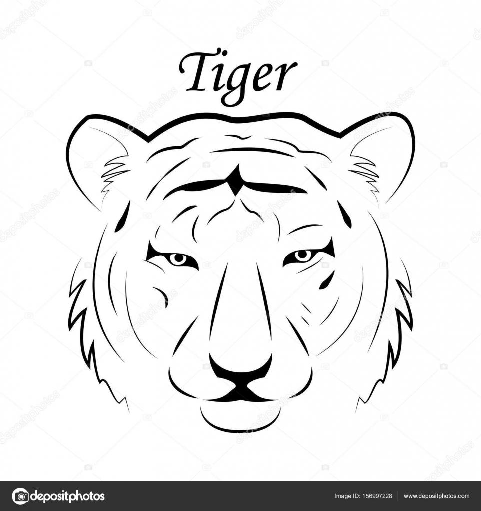 tigerkopf zeichnung vorlage  ausmalbilder