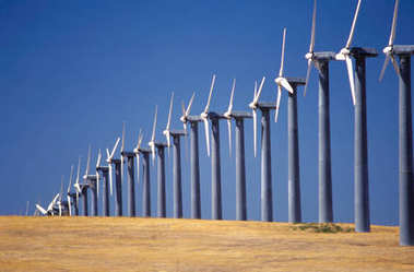 wind turbines on dry field with clear blue sky