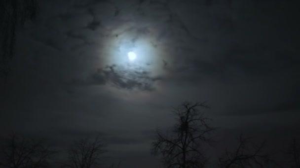úplněk na noční obloze za mraky