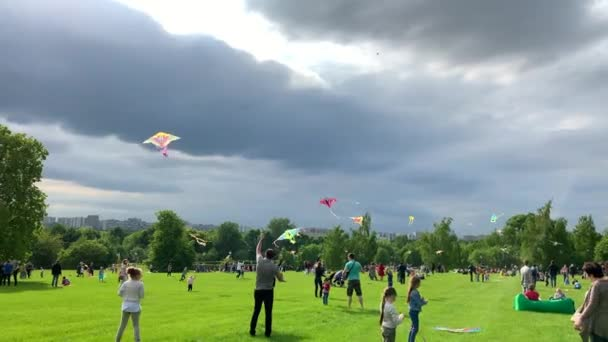 31 August 2019, Moscow, Russia, Tsaritsino Park Museum. Children and adults launch kites against the background of grasses and overcast sky.