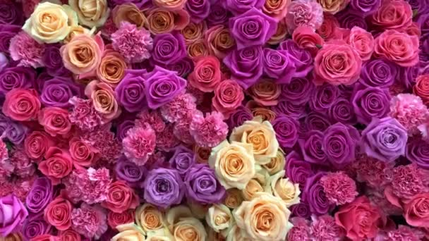Lots of natural bright pink flowers .