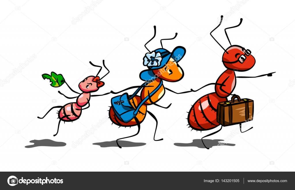 Ant Family Vector Illustration
