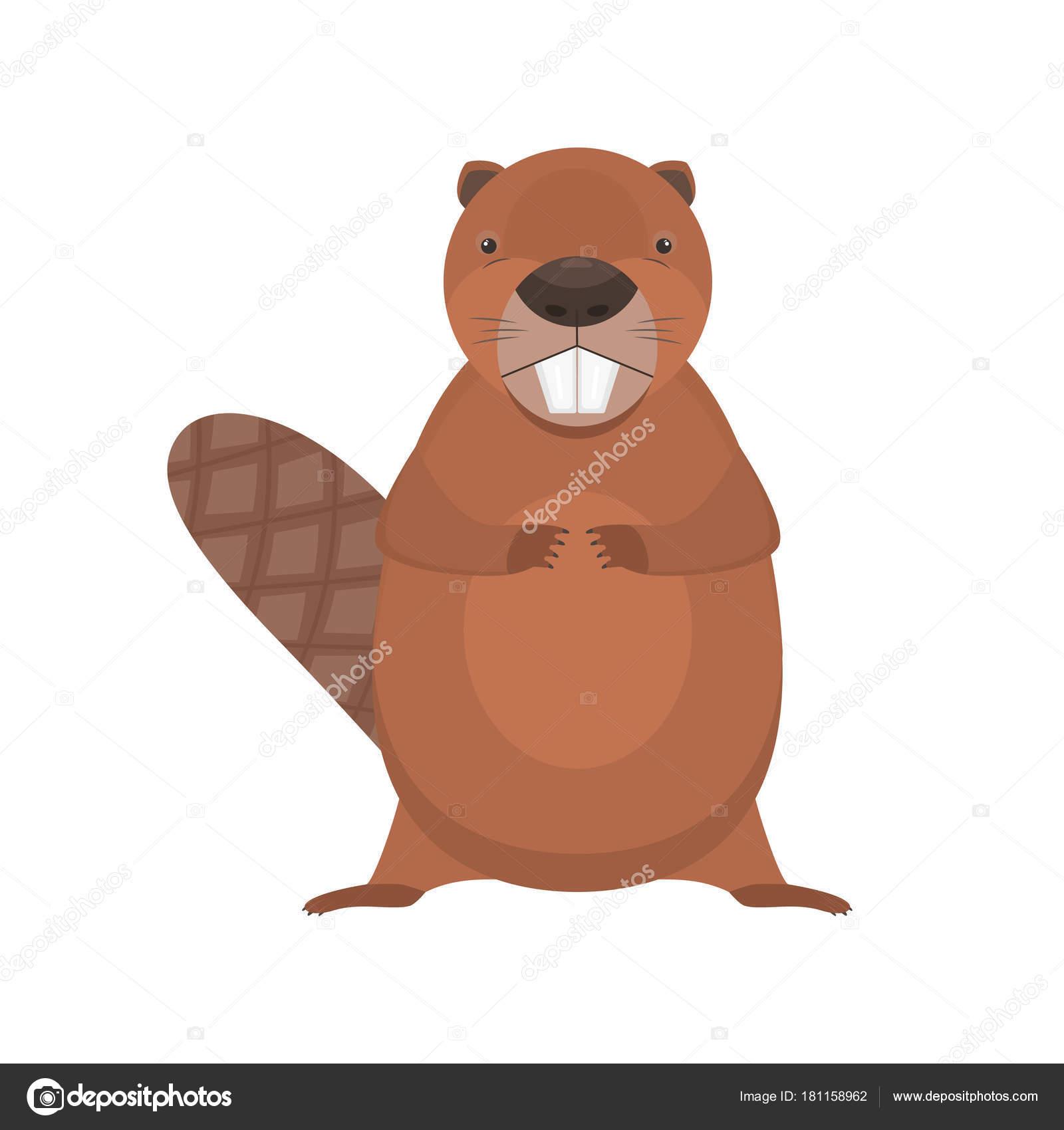 Vettore pelliccia castoro cartone animato vettore piatto in