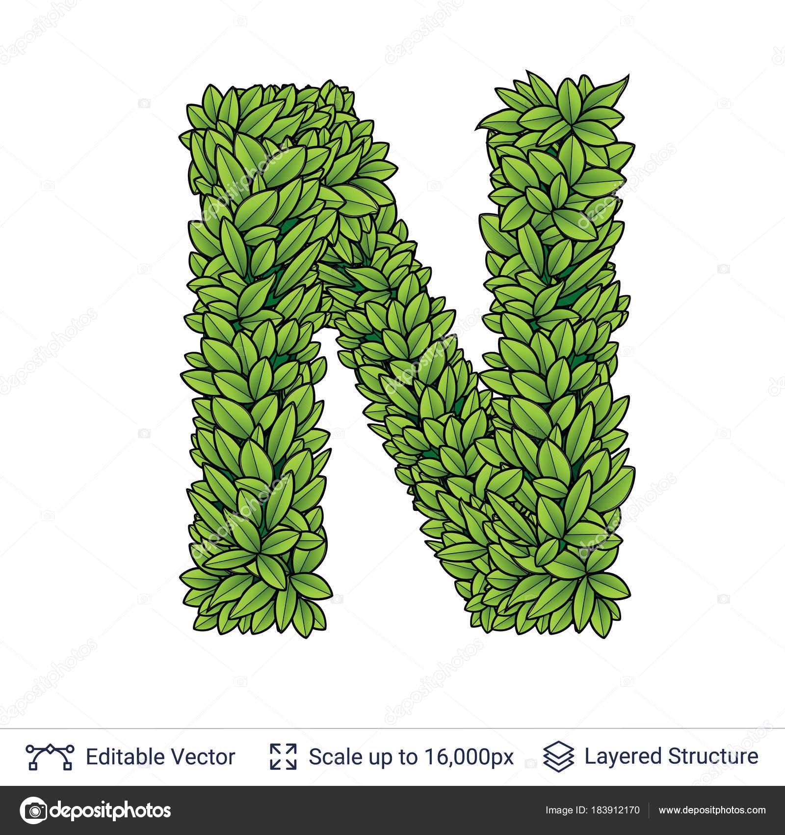 N Chuhail
