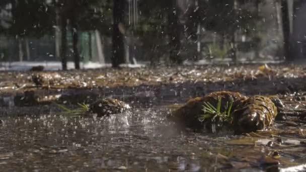 Primo piano di movimento lento di acqua di sorgente e gocce
