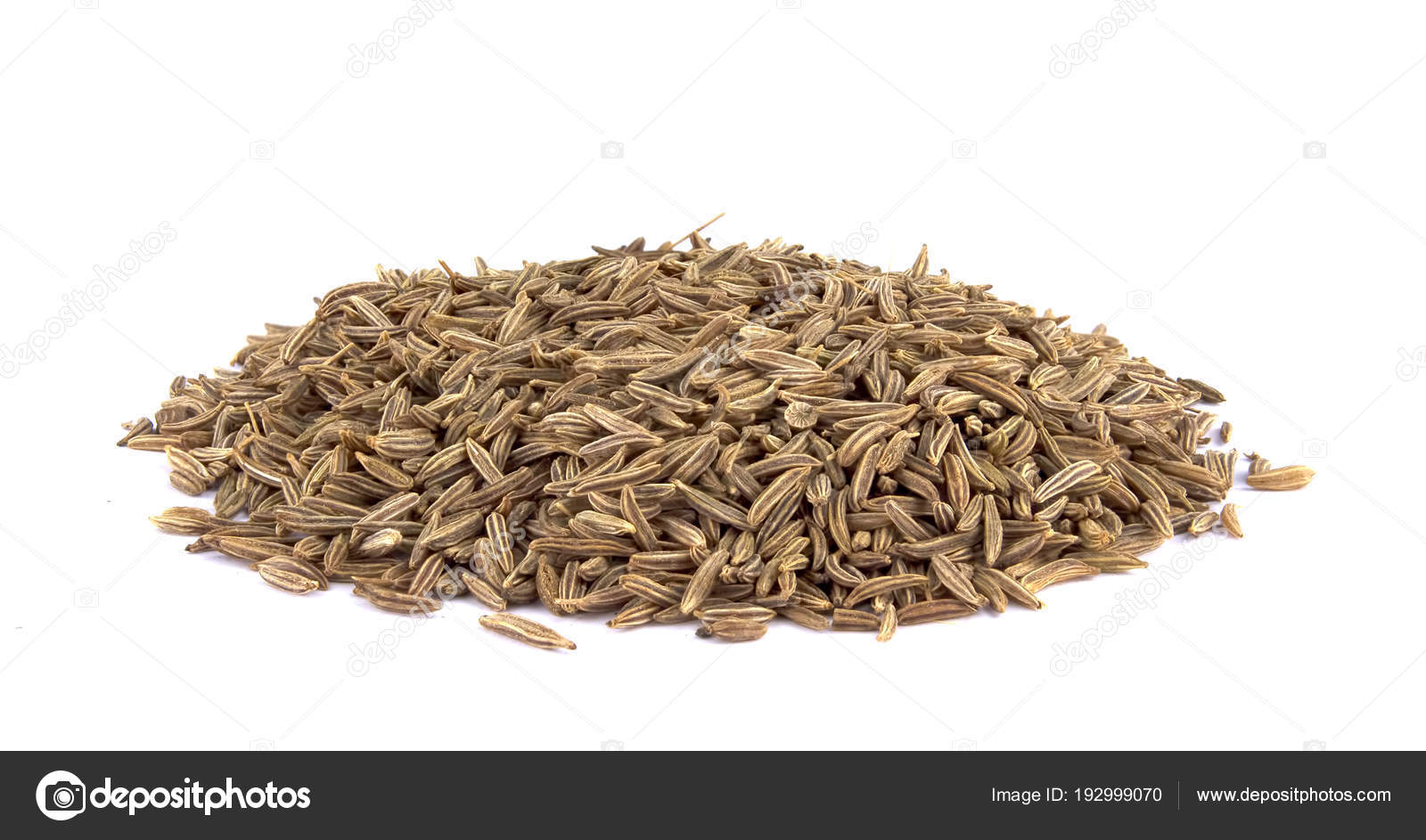 Cumin seeds or caraway isolated on white background — Stock