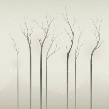 dry trees on misty morning