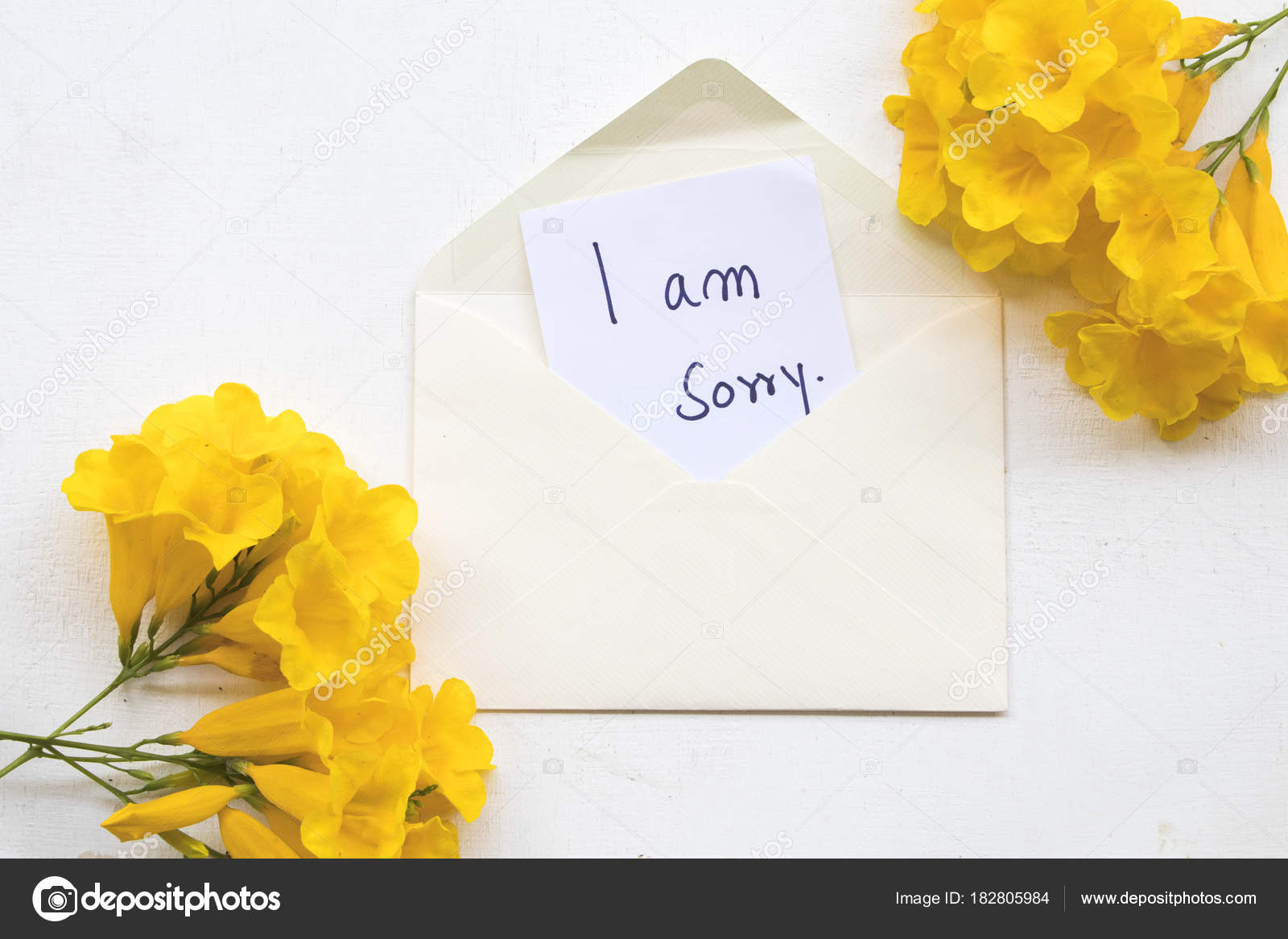 Images I Am Sorry Flowers Sorry Message Card Yellow