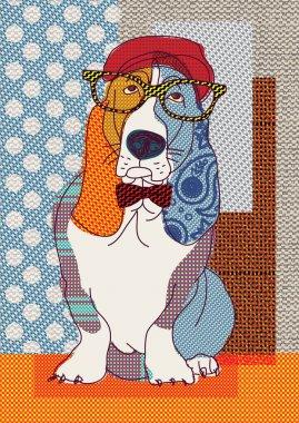 Basset cute dressed dog