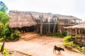 Fotografie Traditional Bamboo homestay in indigneous village by Chiang Rai