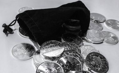Global Investment silver coins with black purse