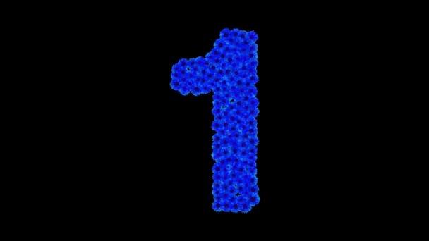 Číslo 1 z chrpy