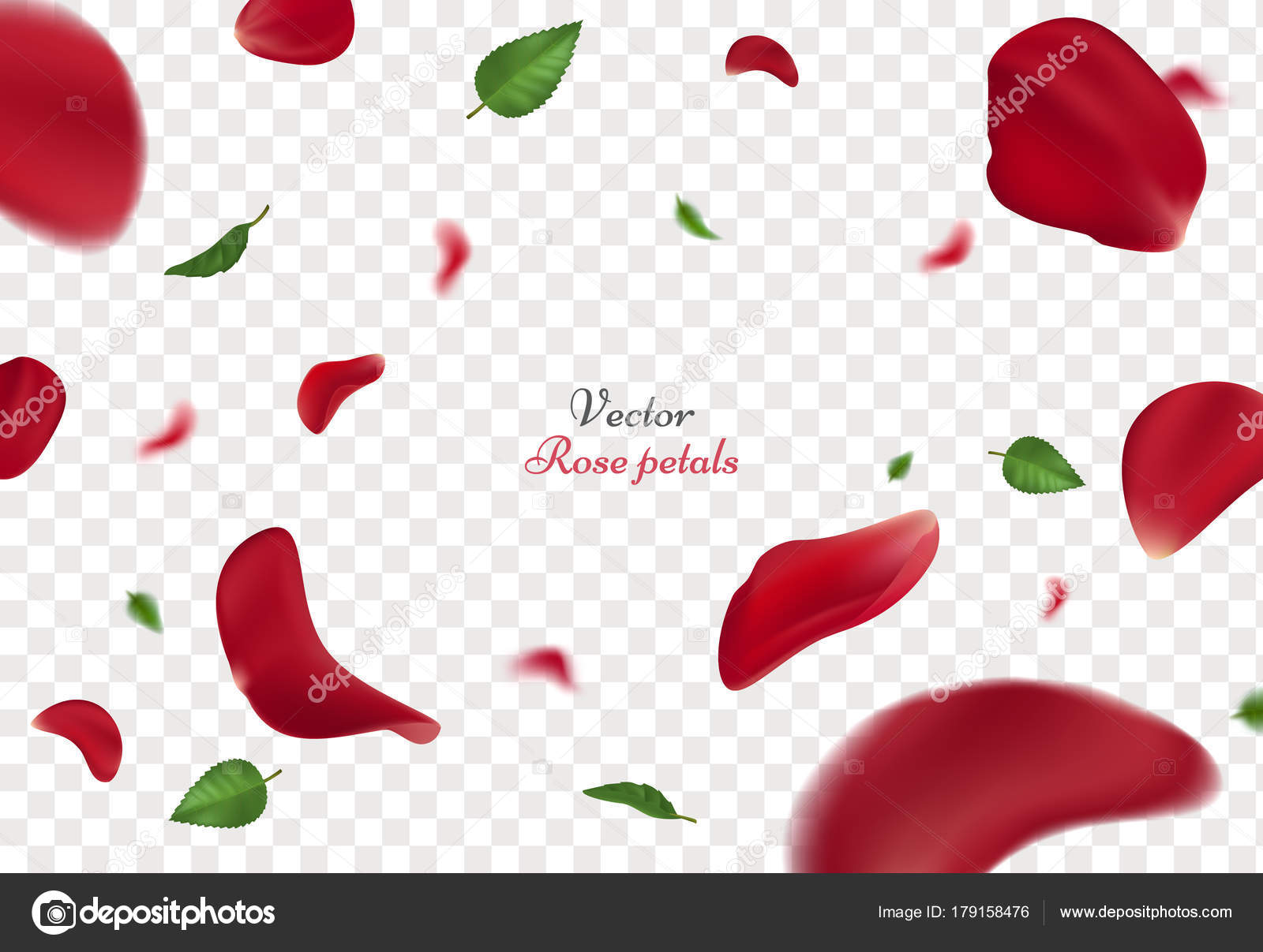 Red rose petals and green leaves isolated on transparent background vector illustration with beauty roses petal applicable for design of greeting cards on women day and valentines day kristyandbryce Gallery