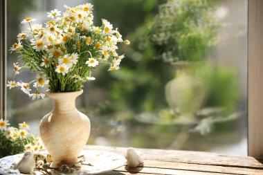 Chamomile bouquet on windowsill