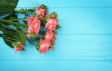Fresh flowers on turquoise  wooden background
