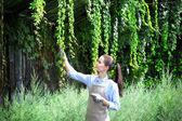 Hezká mladá zahradník starat virginia liána a jalovec ve skleníku