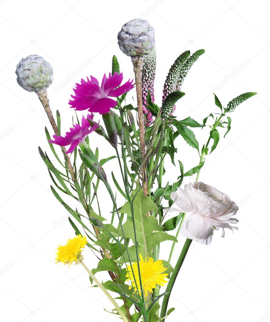 Beautiful bouquet on white background