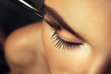 Beautiful girl applying cosmetics