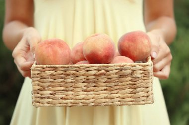 Woman holding basket with peaches