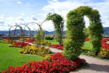 Floral arch in garden