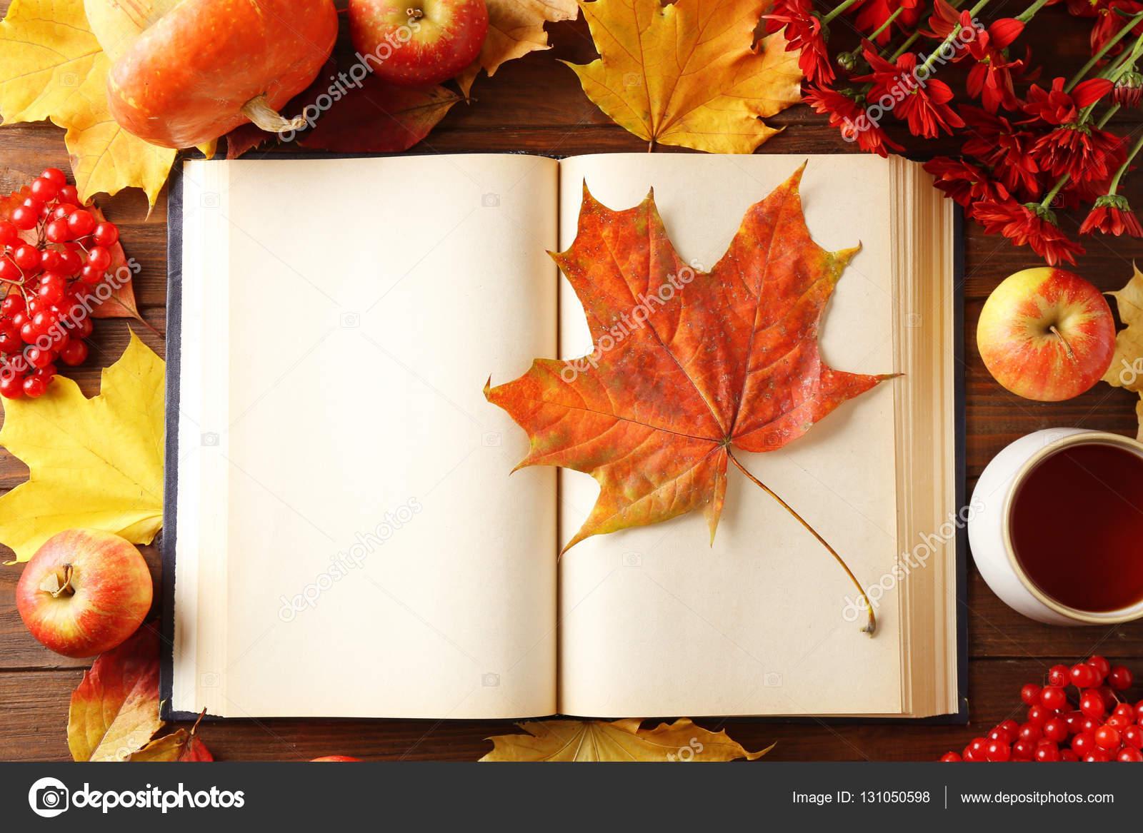 Libro abierto con hojas de oto o foto de stock - Descargar autumn leaves ...