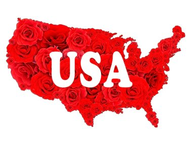 Floral design of USA map