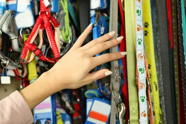 woman selecting lead in pet shop