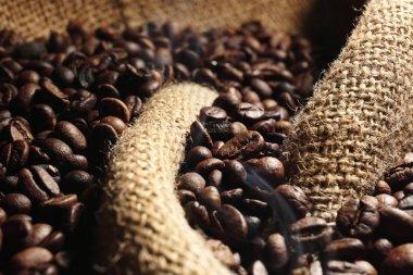 Fresh coffee beans on sackcloth background