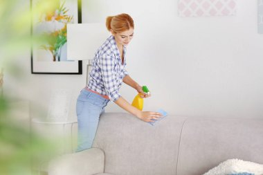 woman cleaning sofa at home