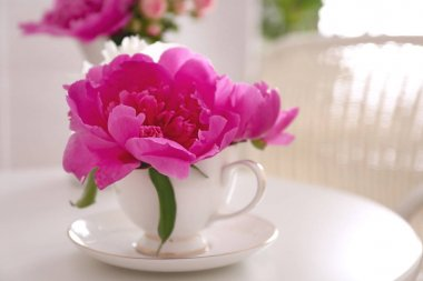 Flower bouquet of peonies in cup