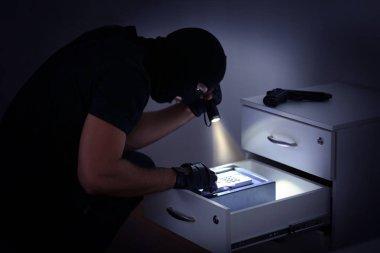 Thief entering password