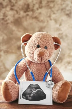 Teddy bear with ultrasound scan of baby