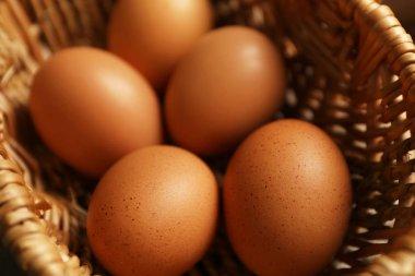 Raw eggs in basket