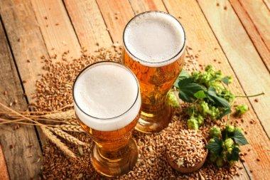 fresh beer and ingredients