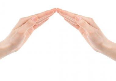 Collaborative human hands