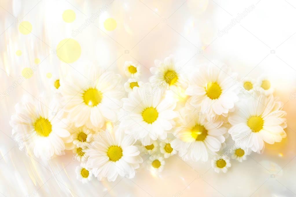 Beautiful tender flowers
