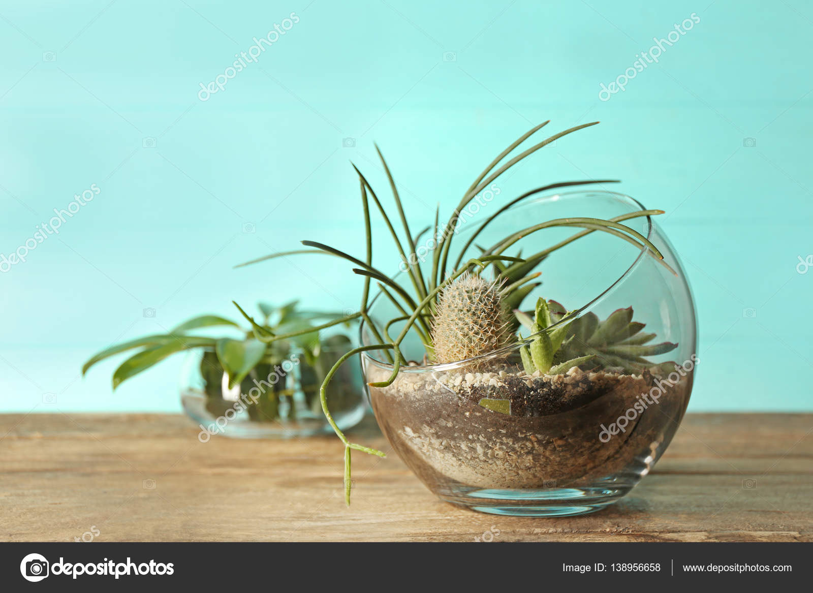 Piante grasse vetro piante grasse nel vetro idee per il - Vasi con piante grasse ...