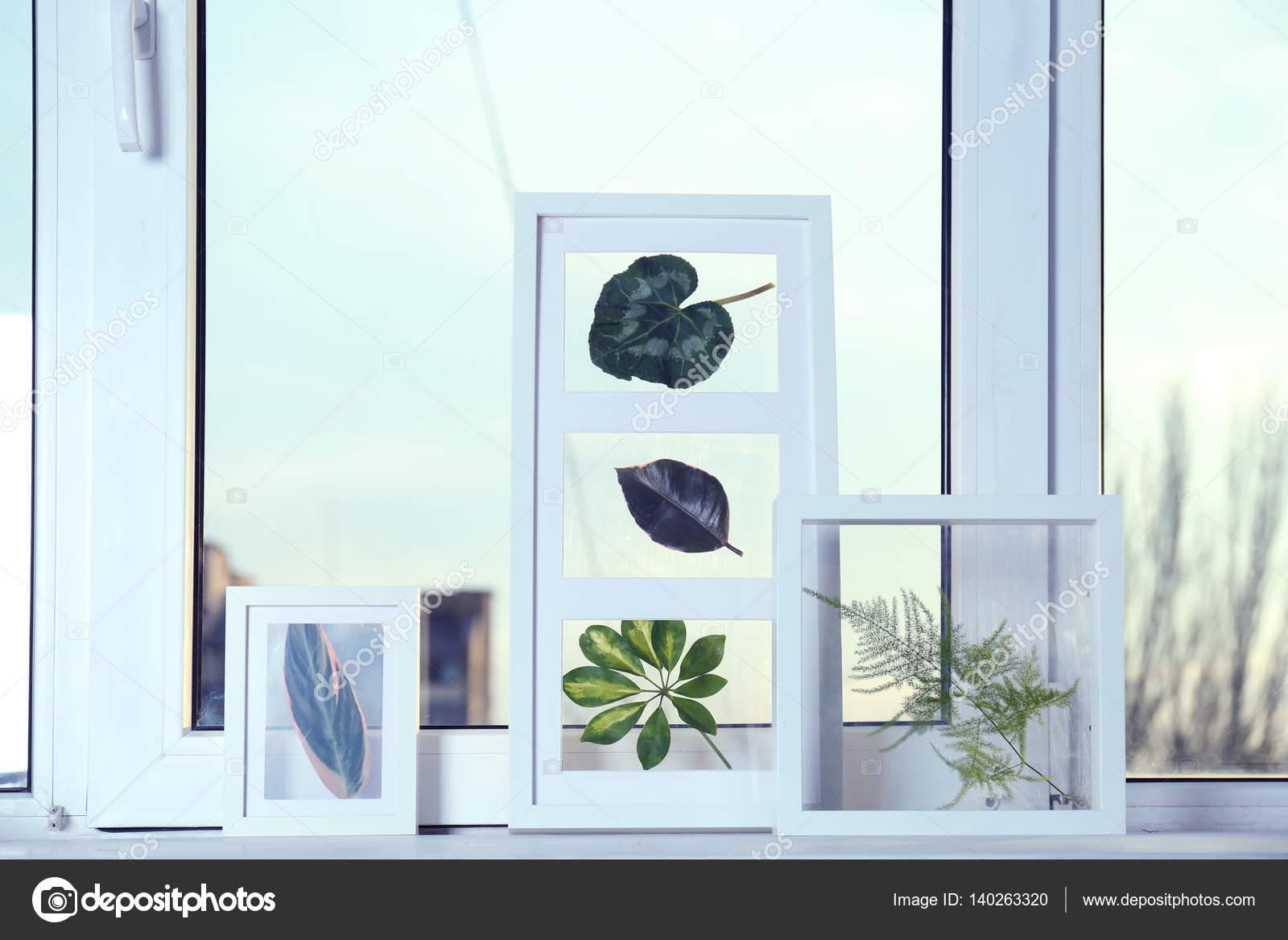 Cornici bianche con foglie verdi foto stock belchonock for Cornici bianche