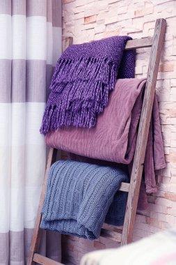 Decorative ladder with plaids